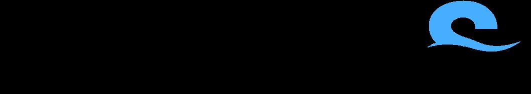 logo-viSKILLSwave